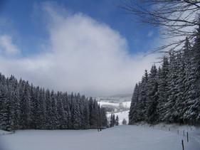 Der erste Schnee in Waldau