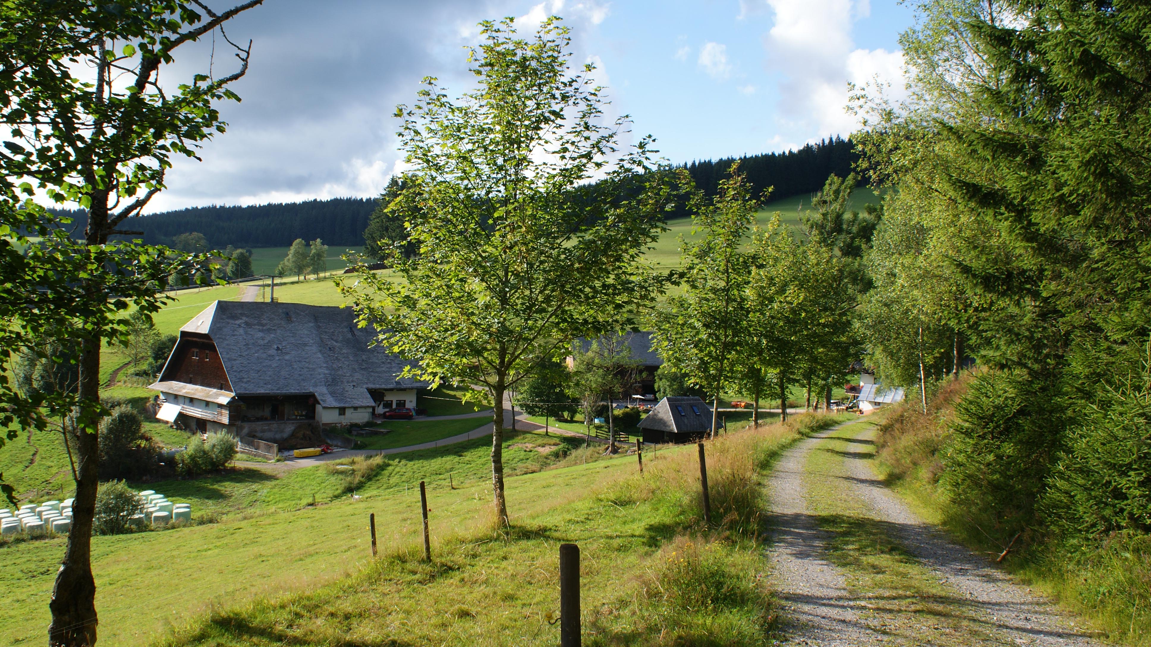 Rotenhof Waldau