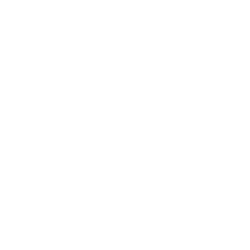 ENVISION BLACK (OFFICIAL) (MM) (TM).png