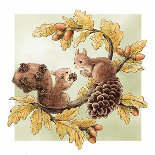 Pine Rats