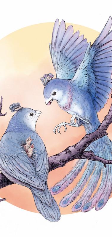 Hole Sparrows