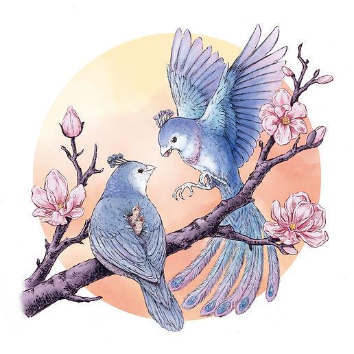 hole sparrow.jpg