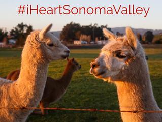 Sonoma is Open: #iHeartSonomaValley