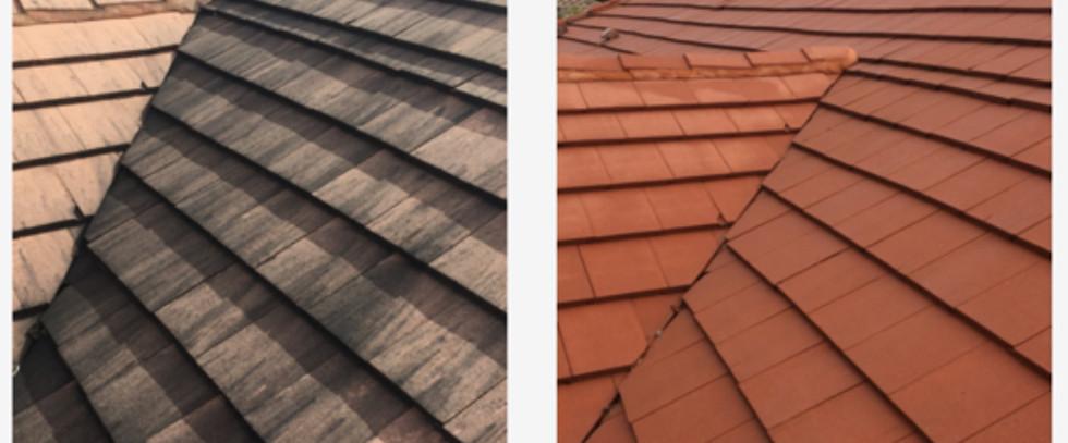 Concrete Tile Roof SoftWash 1.jpg