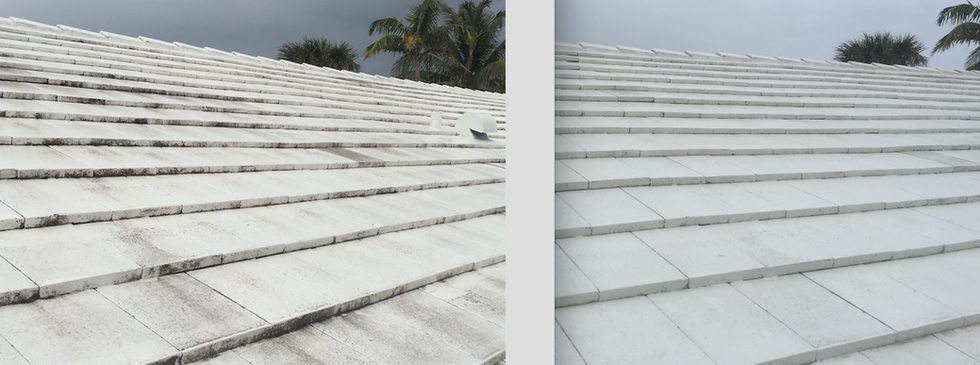 Concrete Tile Roof SoftWash 2.png