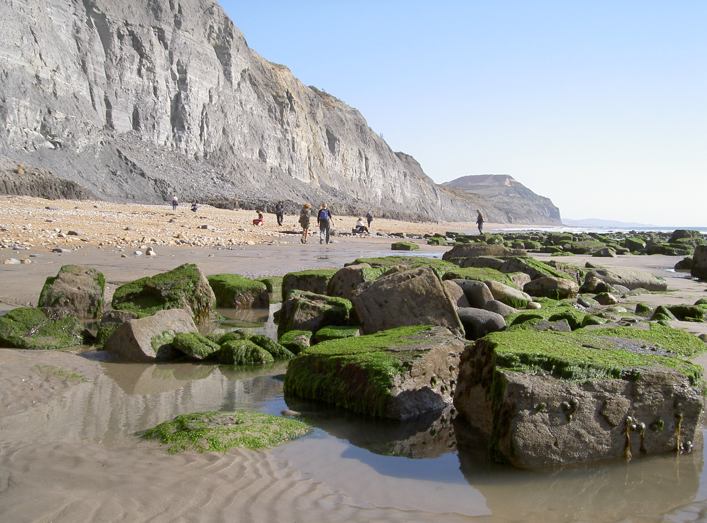 Charmouth 016