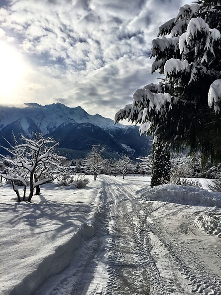 Snow covered grounds and Mt Currie