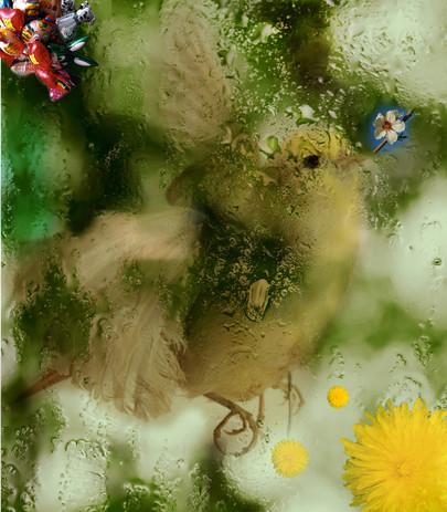 """Série de """"vitrines"""" sur des thématiques  liées à la rénovation de  la place Gambetta  Direction de l'aménagement, Ville de Bordeaux  Composition photographique en studio et numérique, 1/4 (2016)"""