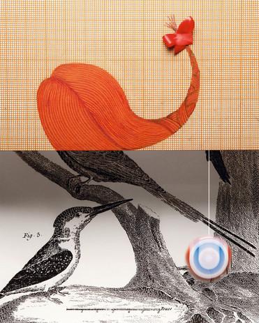 """Brochure Praxice Composition photographique en studio d'une série de """"planches encyclopédiques"""" sur le thème de Ingéniérie et Poésie, 1/6   Groupe Setec (2015)"""