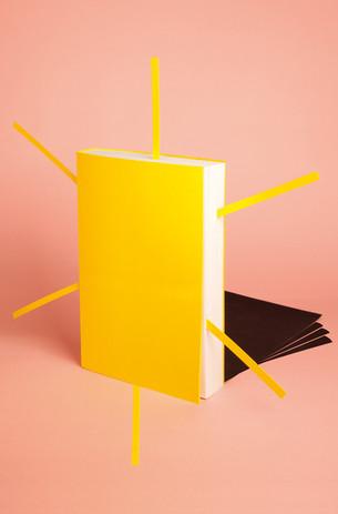 """L'Express """"Les pôlars de l'été"""" 1/2  Composition photographique en studio (2012)"""