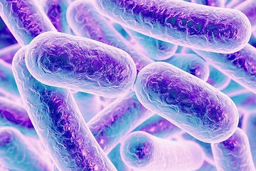 Mimicry-Gut-bacteria-metabolites-copy-hu