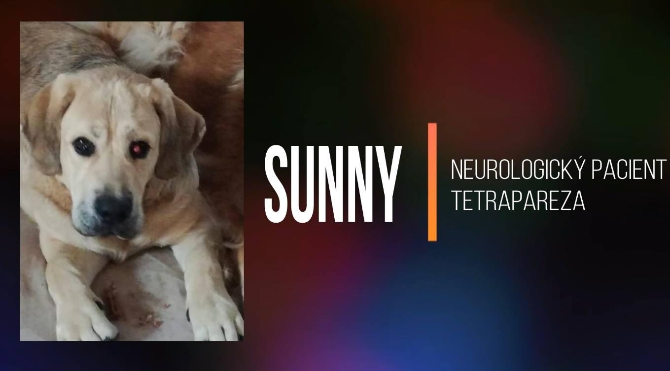 SUNNY: Rehabilitace při ochrnutí po očkování