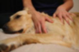 golden_massage-520x346.jpg