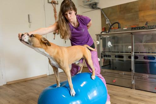 balanční cvičení