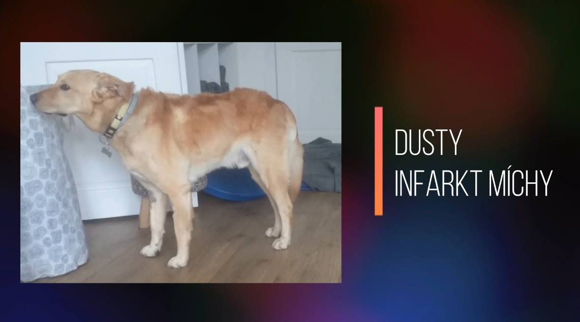 DUSTY: Infarkt míchy