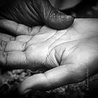 Comment lire les lignes de la main à Genève