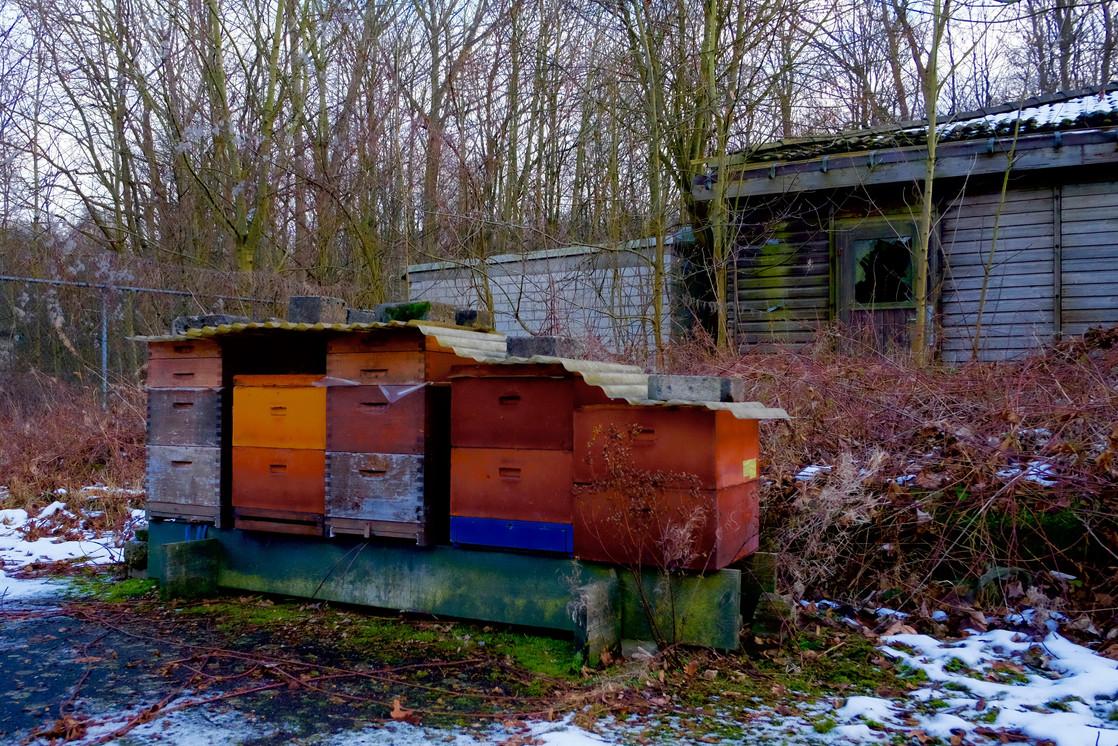 Bienenstöcke im Winterschlaf