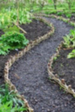 weaving path.jpg