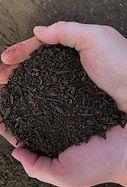 Soil%2520Builder%2520_edited_edited.jpg
