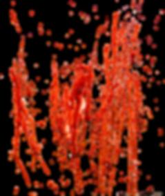 EQ0UJ3-blood-splash-transparent-picture.