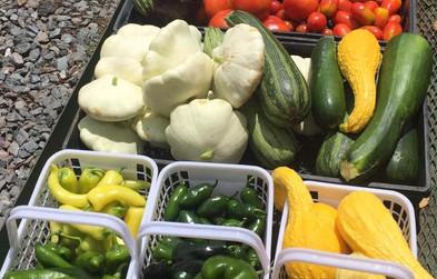 Farm-veggies.jpg