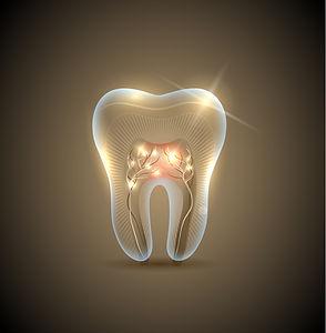toothrootslight.jpg