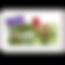 logo-Qualibois-2019-RGE.png