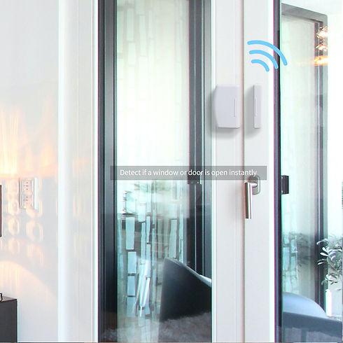 Door and Window Sensor.jpg
