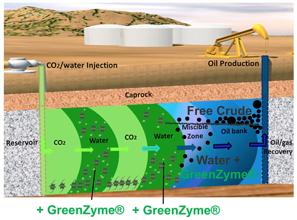 GreenZyme effect on water alternating gas WAG recovery