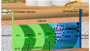 Enzyme Enhanced Oil Recovery for Water Alternating Gas Systems