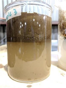 resulting digestate from biological processing of hydrocarbon sludge