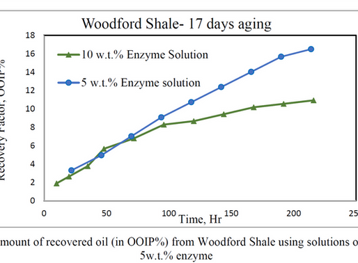 Experimental Investigation on the Application of Biological Enzymes for EOR in Shale Formations