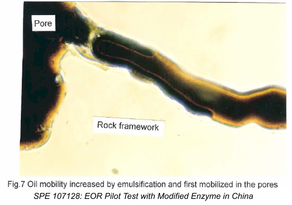 GreenZyme capillary force repulsion and mobilization of oil after emulsion
