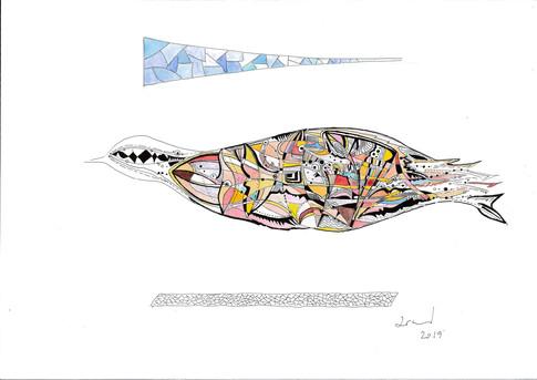 l'oiseau supersonique