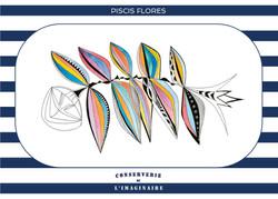Piscis Flores - A6