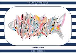 Piscis Sophisticus - A6