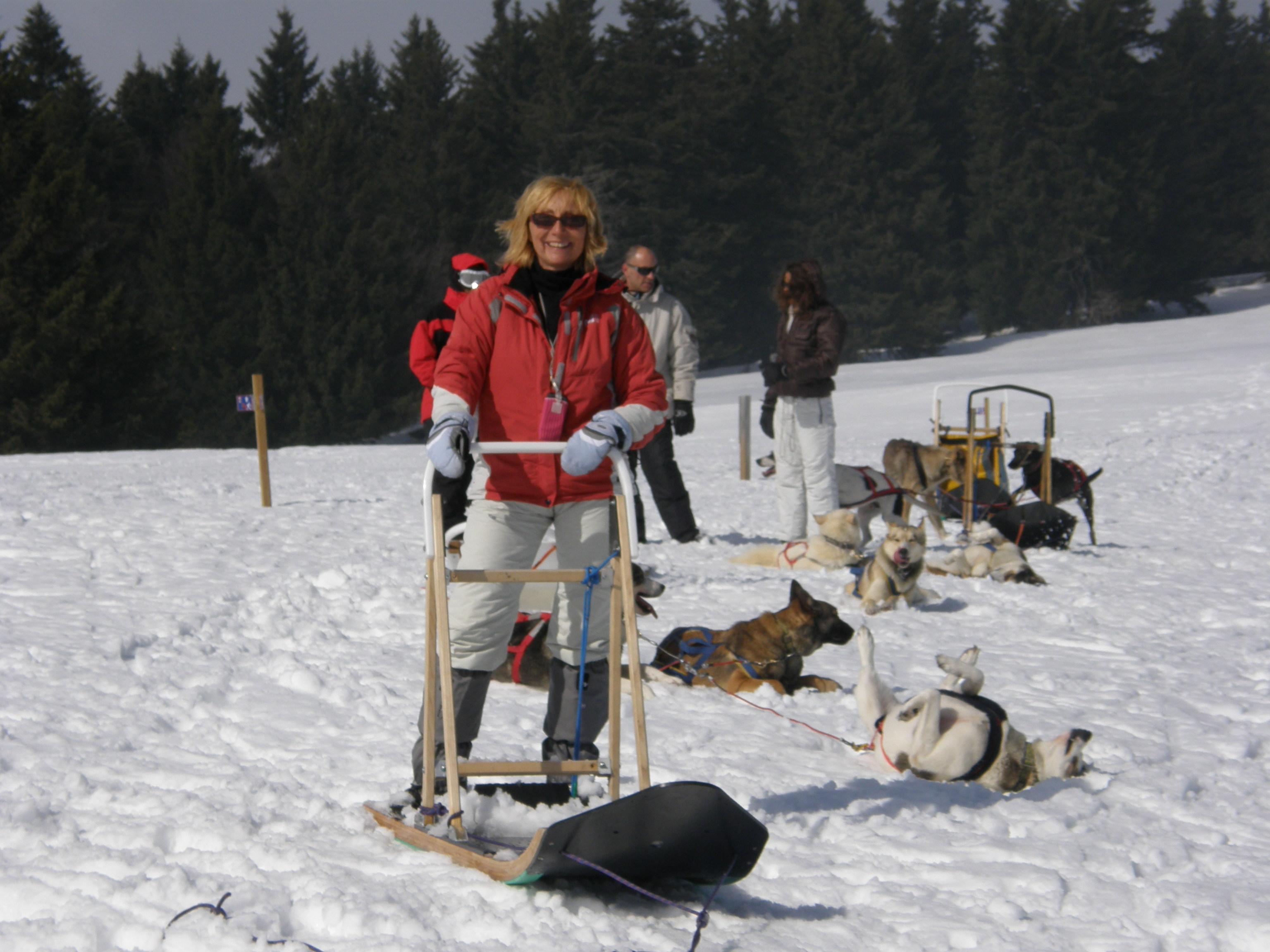 Balade avec chiens de traineau