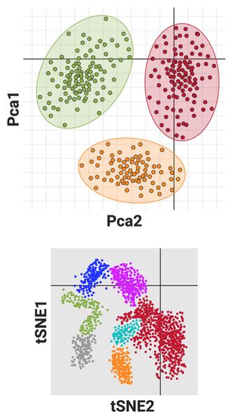 Single Cell RNA Seq