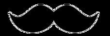 Стрижка собак новороссийск, Груминг Новороссийск, стрижка животных