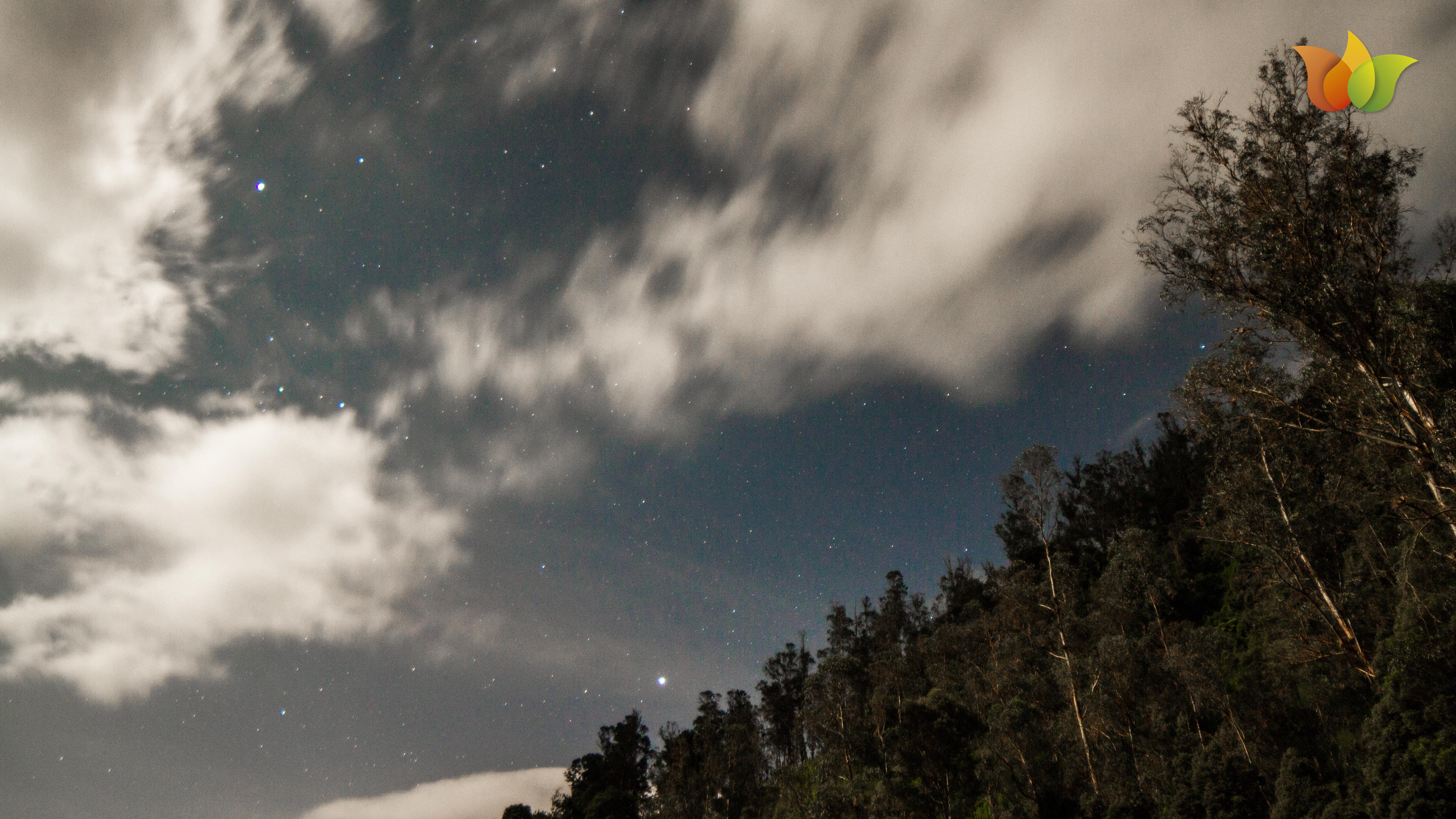 también salimos a ver estrellas