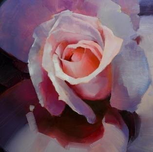 Rose Color Study 3.jpg