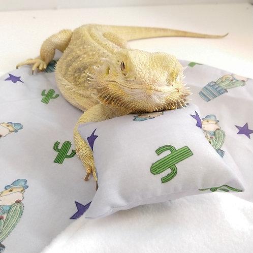 Bearded dragon bed set