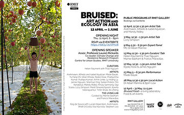 Bruised Art Action and Ecology in Asia R