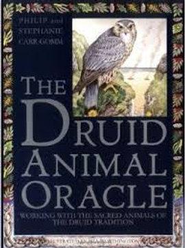 The Druid Animal Oracle