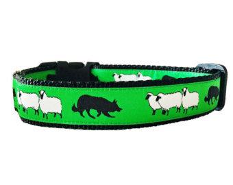 Sheep and Dog Collar