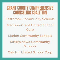 Evaluator for School Counseling Initiative