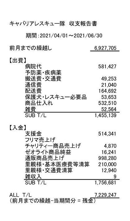 収支_2021_2.jpg