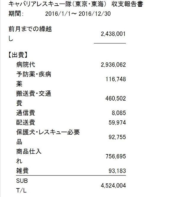 収支_2016_1.jpg
