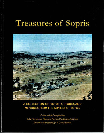 TREASURES OF SOPRIS BOOK COVER.jpg