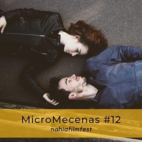 MicroMecenas #12.png